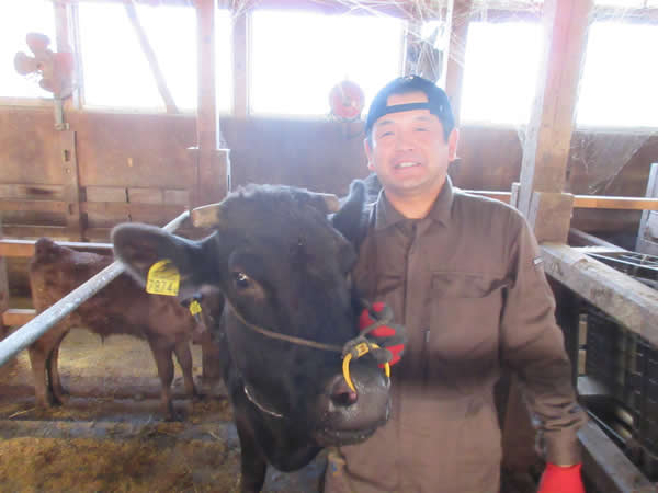 和牛繁殖農家 川西町 横田 健一 さん